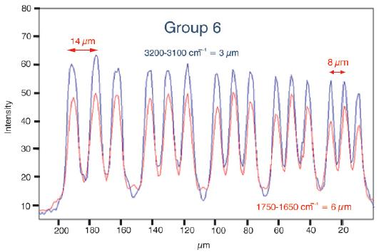 Resolution profile. This figure shows a cut through group 6 and 7 according to the red lines drawn in figure 1c. The blue trace corresponds to the profile at 3200 cm-1 and the red trace corresponds to the profile at 1650 cm-1.