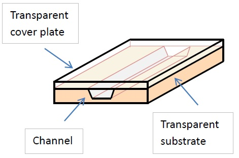 Schematic representation of a microfluidics device.