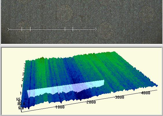 Zeta 2D (top) and 3D (bottom) images of a reference substrate.