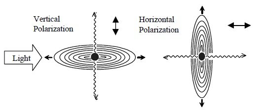Scattering from different polarizations.