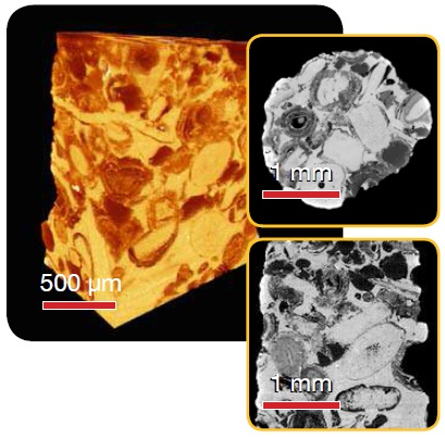 Calcite - Superior contrast and resolution in 3D and virtual internal slices with VersaXRM at a resolution of 1.4 µm voxel