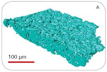 3D solid-phase renderings from the scans on (A) VersaXRM, (B) UltraXRM, and (C) synchrotron nanoXCT