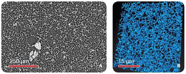 Solid Foams (A) Microcellular foam imaged using the MicroXCT (VersaXRM family) and 1 µm voxel size resolutions. (B) Polystyrene foam imaged using the UltraXRM-L200 using 65 nm isotropic voxels.