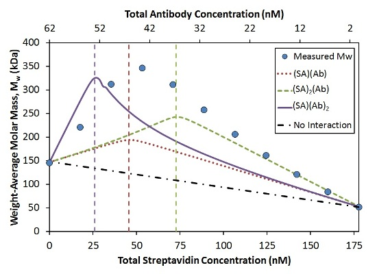 Measured Mw compared to simulated Mw for the indicated stoichiometries with KD = 0.2 nM at each binding site.