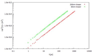 Mean Square Displacement (Δr2 (t)) with time for two different probe sizes in water.