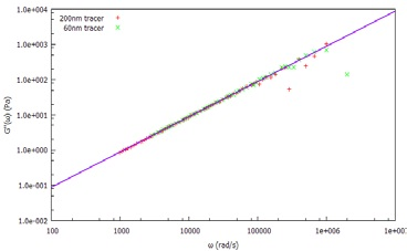 """Viscous (loss) modulus, G"""", of water measured using 60nm and 20nm tracer particles."""