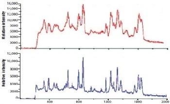 Wavelength Stabilized Diode Laser for Raman Spectroscopy
