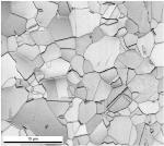 Properties of Twinning-Induced Plasticity (TWIP) Steel
