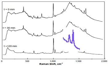 Using Kaiser's RamanRxn2™ Analyzer to Monitor Emulsion Polymerization Reactions
