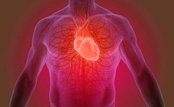 DuraPulse for Heart Valve Durability Testing Applications