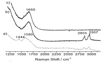 Using In Situ Raman Spectroscopy to Study Methanol Conversion over TiO2 Supported Oxomolybdate Catalysts
