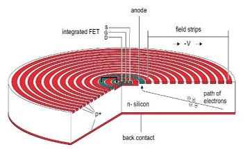 An Introduction to Silicon Drift Detectors