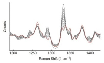 Using Raman Spectroscopy to Monitor the Composition of Active Coatings