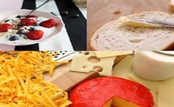 Food Texture Testing of Dairy Products