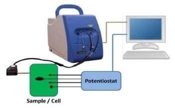 Electrochemical Raman Spectroscopy for In-Situ Characterization