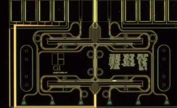 On-Chip Quantum Optics with Photonic Circuits
