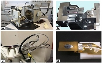 Improve Image Quality of Serial Block-Face Scanning Electron Microscopy