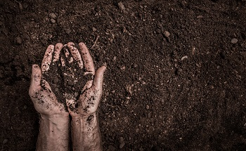 Using ICP-AES for Quantitative Analysis of Soil Extracts