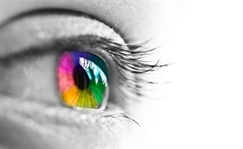 How Does Tri-Stimulus Colorimetry Correspond to Human Vision