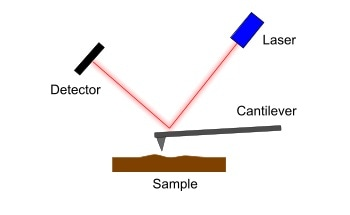 What is Scanning Probe Microscopy (SPM)?