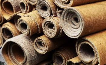 Characterization of the Composition and Decomposition of Carpet