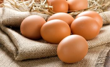 Understanding Pneumatic Egg Punch