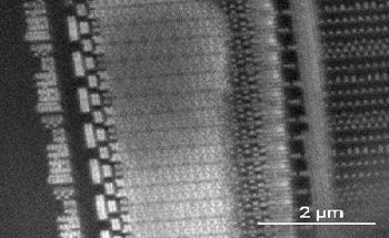 Delayering Sub-20 nm Nodes for In-Situ Nanoprobing with TESCAN S8000X