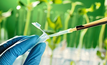 Simultaneous Determination of Residual Agricultural Chemicals in Food