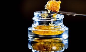 Extracting Cannabinoids with Short-Path Distillation