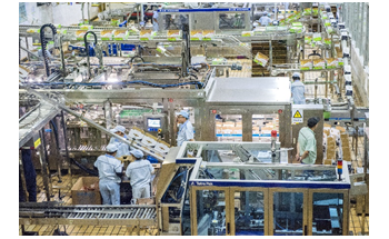 Industrial Food & Beverage Processing Machinery: Tracing Polymer Seals & Materials Technologies