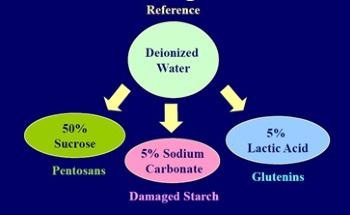 Optimizing Baked Goods Quality with the Characterization of Wheat Flour Water Absorption Properties Using SRC