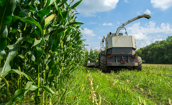 Analysis of Forage in Combine Harvesters with NIR