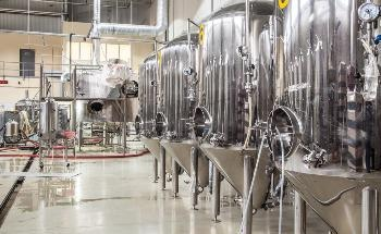 Optimization of the Beer Fermentation Process