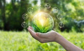 Sustainability in Product Innovations