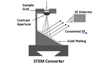 STEM-in-SEM: Scanning Transmission Electron Microscopy in an SEM