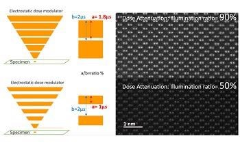 Illuminating Nanoscale Dynamics Employing Unique Solutions from JEOL and IDES
