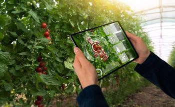 Machine Vision in Smart Agriculture