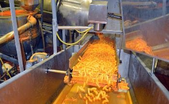 Utilizing Near-Infrared (NIR) Technology to Improve the Shelf Life and Flavor of Food
