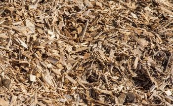 Regenerating Wood Waste with Additive Manufacturing