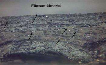 Oil Hose Failure Case Study Using FTIR, TGA and Microscopy