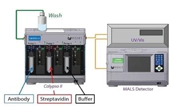 Metacomplex Formation in the Hetero-Association of Multivalent Antigen and Bivalent Binding Partners Using CG-MALS