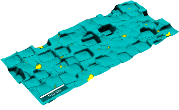Topographic Raman Imaging: WITec TrueSurface Microscopy