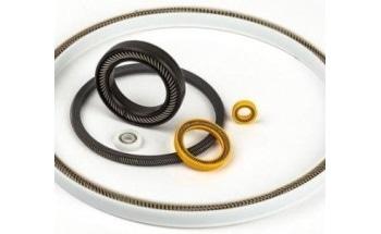 Spring-Energized Seal - OmniSeal® APS