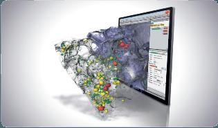 Thermo Scientific Avizo Software for Materials Science