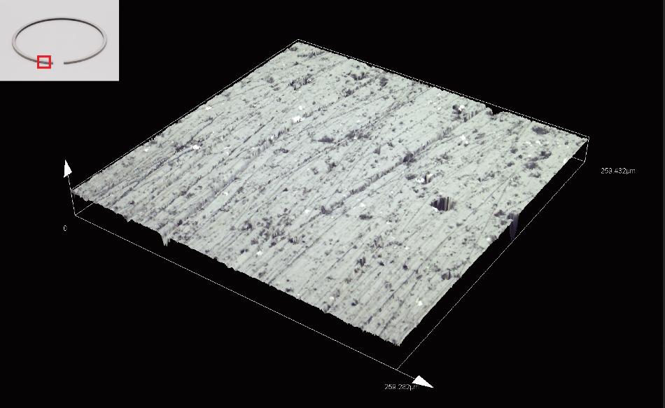 Piston ring/area roughness measurement (MPLAPON50XLEXT).