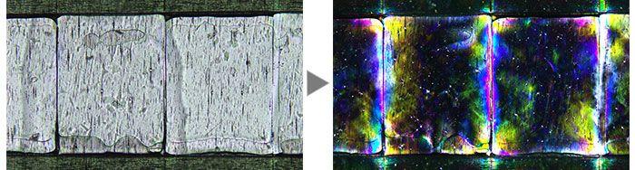 Film (Left: Brightfield/Right: Polarized light).
