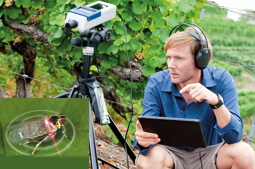 Field measurements like entomology for pest control with VibroGo.