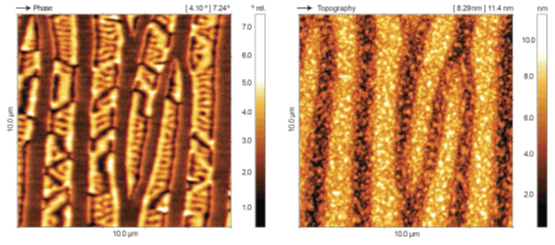 Magnetic force microscopy on MnAS thin film sample. Domains with different magnetic orientations are visualized in the phase image. Image acquired with DME DS 95 Compact granite SPM system.