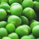 Pre-Packaged LIMS Solutions for Food and Beverage Laboratories