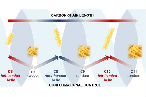 The image shows how the conformation (shape) of our carbon chains alternate between ordered and chaotic structures as the carbon chain alternates between having even and odd numbers of atoms